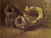 Still Life with Three Birds Nests, 1885, vangogh
