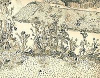 Thistles Along the Roadside, 1888, vangogh