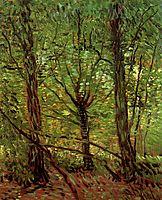 Trees and Undergrowth, 1887, vangogh