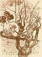 Treetop Seen against the Wall of the Asylum, 1889, vangogh