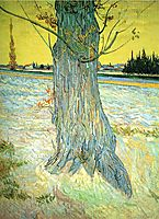 Trunk of an Old Yew Tree, 1888, vangogh