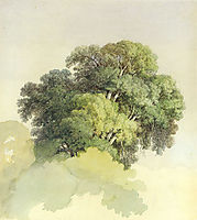 The Crowns of the Trees, 1867, vasilyev