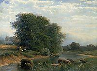 Near Krasnoye Selo, 1868, vasilyev