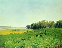 Wet Meadow 1. Study, 1872, vasilyev