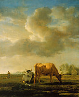 Cows on a Meadow, 1658, veldeadriaen