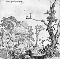 Landscape, veldeesaias