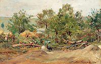 Turkeys in Vlaici, 1921, vermont