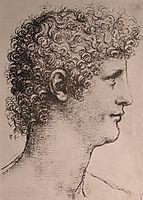 Drawing of Salai, c.1500, vinci