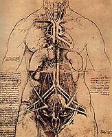 Drawing of a Woman-s Torso, vinci