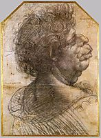 Grotesque head, 1500-1505, vinci