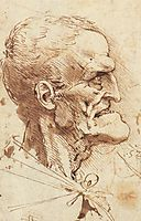 Grotesque Profile, c.1487, vinci