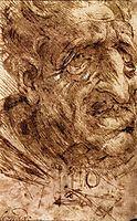 Head of an Old Man, c.1488, vinci