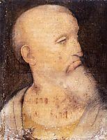 Head of St. Andrew, vinci