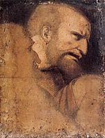Head of St. Peter, vinci