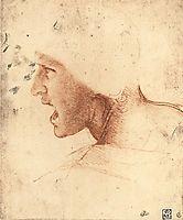 Head of a Warrior, 1504-1505, vinci