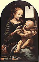 Madonna with Flower, 1478, vinci