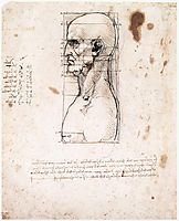 Male head in profile with proportions, 1490, vinci