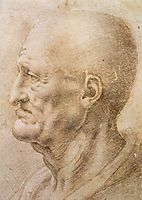Profile of an old man, c.1505, vinci