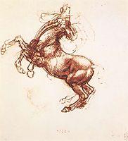 Rearing horse, 1503-1504, vinci