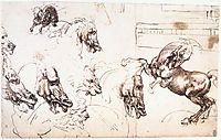 Study of horses for the Battle of Anghiari, c.1503, vinci