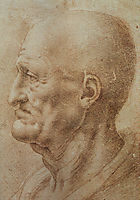 Study of an Old Man-s Profile, vinci