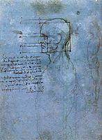 Study of proportion, c.1490, vinci