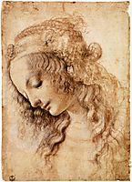 Woman-s Head, 1470-1476, vinci