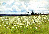 Field of Daisies, volkov