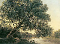 Tree by the brook, c.1831, waldmuller