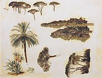 Tree studies from Rome , 1846, waldmuller