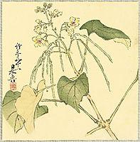 Summer Flower, 1888, zeshin