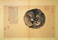 Cat (Sketches from Life), zhoushen