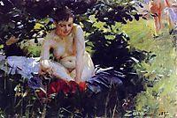 Red Stockings, 1887, zorn
