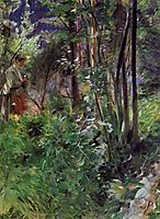 A Woman in a Forest, 1907, zorn